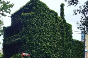 """""""Живой"""" дом с тремя спальнями сравнивают с жутким домом из """"Джуманджи"""": особняк с террасой теперь оценивается в сумму до $ 2 200 000"""