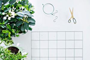 Как оборудовать стену для цветочных горшков: очень простое решение, но смотрится красиво