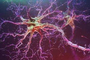 Йельские ученые восстанавливают поврежденный спинной мозг стволовыми клетками самого пациента