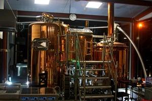 Эксперимент по маркировке: почему пиво подорожает, а крафтовые пивоварни могут закрыться