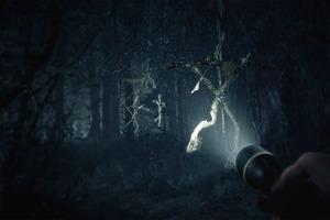 Лес Ягата, Светящаяся роща и другие пугающие локации: от каких лесов в компьютерных играх мурашки по коже