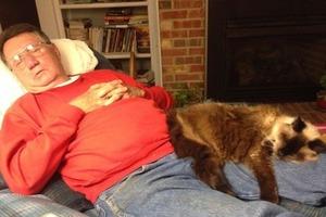 Они также заслуживают любви и заботы: владельцы пожилых котов поделились своими историями