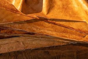 Экологичные биоматериалы из грибов полностью имитируют натуральную кожу и набирают популярность у клиентов и производителей