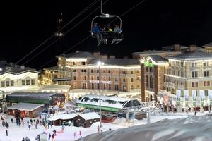 В Сочи зажгутся новогодние огни: российская туристическая Мекка готовится принять 350 тысяч гостей во время каникул