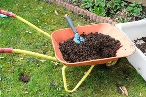 Чтобы на следующий год урожай меня приятно удивлял, в компост добавляю ингредиент, который есть в каждой кладовке: старое варенье