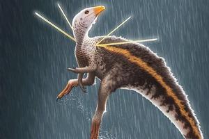 Обнаружен новый вид динозавров: они были размером с курицу и очень пушистые