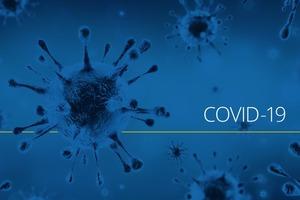 COVID-19: школы хотят избавиться от любых упоминаний вируса в английском языке