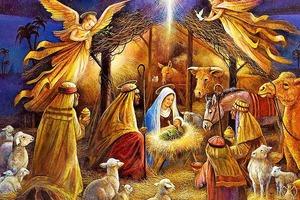 Откуда пошла традиция украшать дом еловыми ветками: история рождественского праздника