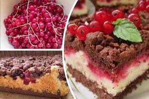 """Шоколадно-кокосовый торт """"Фантазия"""": такой вкусный, что специально замораживаю для него летом красную смородину"""