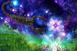 Если вы находитесь под защитой Скорпиона, вам нечего бояться: знаки зодиака, обладающие магическими способностями