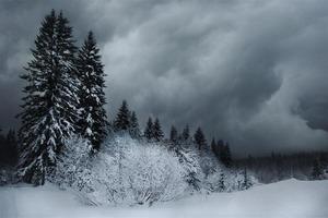 Насколько суровой будет зима в этом году? На Сибирь надвигается полярный вихрь