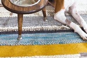 Корм по дому больше не разбрасывает: смастерила для собачьей миски специальный стульчик-подставку, который украшает интерьер и помогает подд