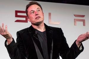 Одних электромобилей Tesla мало. Илон Маск всерьез замахнулся на новую отрасль