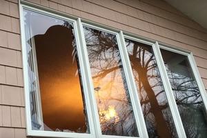 Супруги вернулись из отпуска и обнаружили разбитое окно. Внутри их ждала гостья - индюшка
