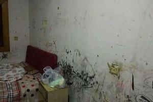 Студентке дали комнату, в которой невозможно жить. Сейчас жилье не узнать: фото