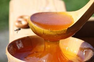 Дедушка-пасечник научил, как проверять мед на качество. Некачественный мед я вернула продавцу, получив деньги обратно