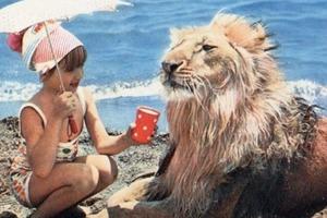 Они держали льва в простой советской квартире... Печальная история семьи Берберовых