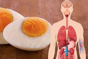 Ученые выяснили, что будет с телом, если съедать по 2 яйца в день