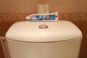 Муж взял тюбик зубной пасты и проколол его шилом. Дорогие блоки для унитаза не покупаю уже почти 2 месяца