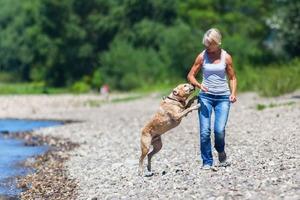 Собачья жизнь: собаки прыгают на хозяев, когда те приходят вечером домой, не от радости, а потому, что раздражены