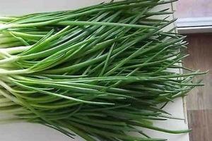 Мама научила, как вырастить зеленый лук в пакете. Теперь даже не вожусь с землей
