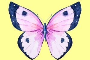 Бабочка, которую вы выберете, выявит скрытые стороны вашей личности