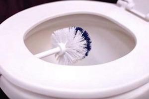 Щетка поможет очистить унитаз до блеска: простой лайфхак
