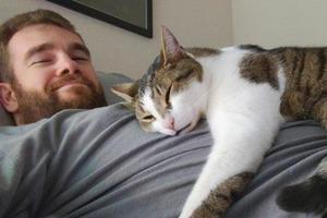 Кот часто спит со мной. Подруга ветеринар объяснила, почему