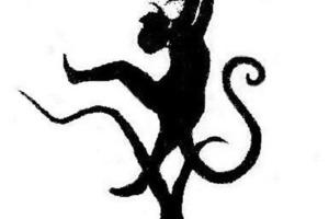 Тигр или обезьяна: первое, что вы увидите на картинке, расскажет о вашем характере
