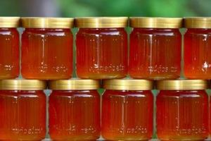 Знакомый пасечник подсказал, как легко и быстро определить качество меда