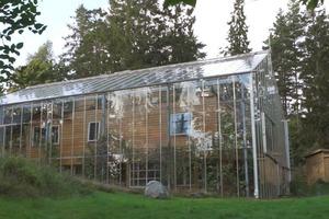 Семья живет в доме-теплице уже 4 года: как он выглядит изнутри (фото)