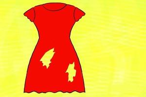 Сколько отверстий на этом платье? Загадка с подвохом
