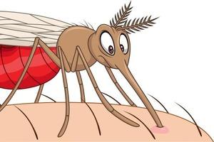 """Кого """"любят"""" комары: ученые рассказали, кого они кусают, а кого нет"""