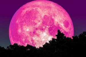 Апрельская луна сулит беду? Чего не стоит делать с 7 по 9 число, чтобы не столкнуться с проблемами