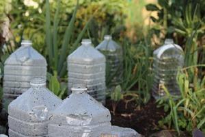 Соседка попросила у меня пластиковые бутылки: заглянув в ее огород, я взяла идею на вооружение