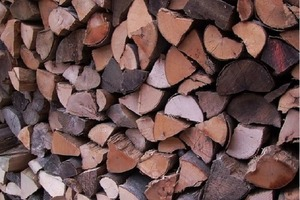 Только самый внимательный человек сможет найти мышонка, спрятавшегося в дровах