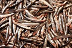 Диетологи назвали самую полезную рыбу. Она очень вкусная и стоит недорого