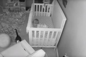 Родители посмотрели записи с камер и поняли, что кошку нужно убирать из детской