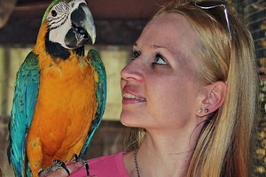Услышав, что говорит попугай, женщина развелась с мужем