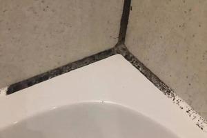 Простая вата и отбеливатель: стены в моей ванной комнате засияли как новые