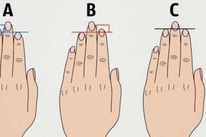 Длина пальцев и размер груди расскажут о склонностях к болезням: выводы ученых