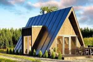 Эстонский дом стоит 10 000 евро и построен всего за несколько дней: как он выглядит внутри (видео)