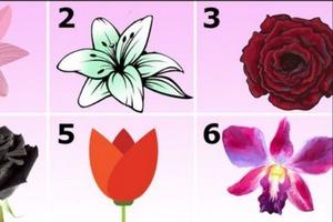 Выберите один из цветков и узнайте, почему окружающие любят вас: интересный тест