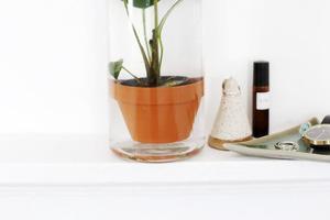 Увидела в продаже водные растения в сосуде с горшочками. Я сама сделала такое же дома: это просто, а смотрится невероятно красиво