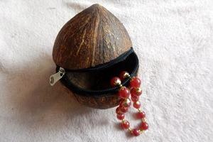 Купила кокос, а скорлупу решила не выбрасывать: смастерила из нее симпатичную шкатулку на молнии