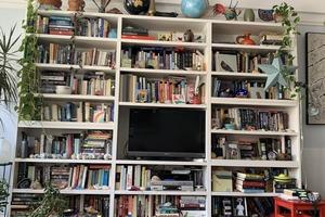 Кот прилег поспать на книжной полке. Хозяйка долго не могла его найти