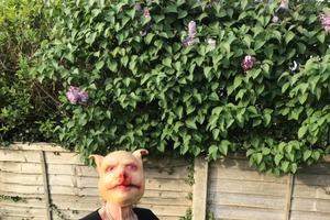 Свинья на защите бабушки: у женщины не было медицинской маски, она надела маску свиньи, чтобы пообщаться с подругой