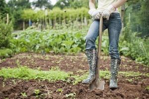 Огород - лучшее средство для похудения: сколько калорий сжигается во время работы в саду