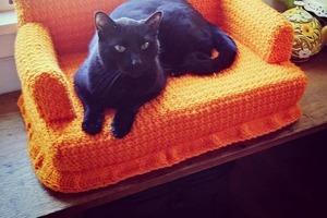 Появилось так много свободного времени, что люди ищут отдушину в чем угодно: они вяжут мебель для кошек