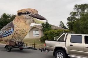 Австралийский скульптор построил гигантскую электронную кукабару: процесс занял полгода